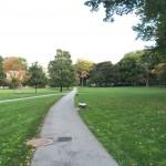 Fordham Rams Bronx