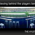 The Hyundai Terrace- Lions