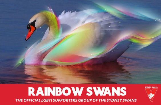 Sydney Swans AFL Rainbow Swans