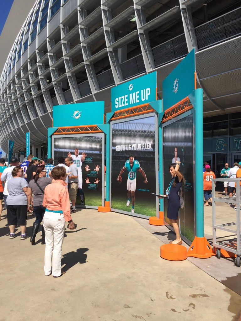 Dolphins Photo Ops