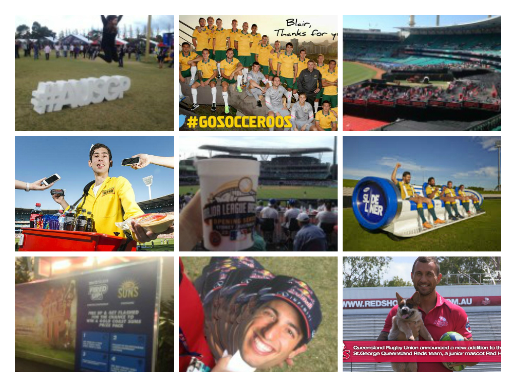 2014 Australian Fan Engagement Review